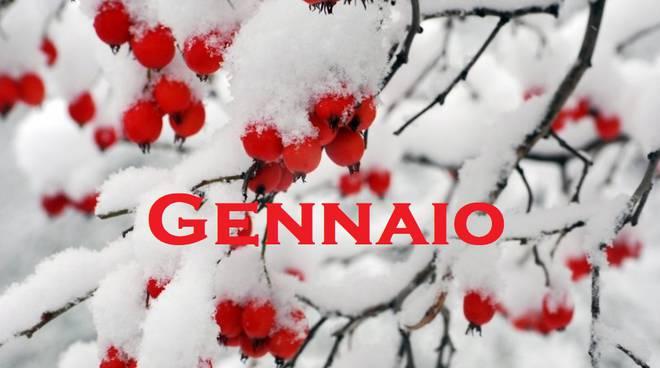 COME CURARSI IN MODO NATURALE A GENNAIO